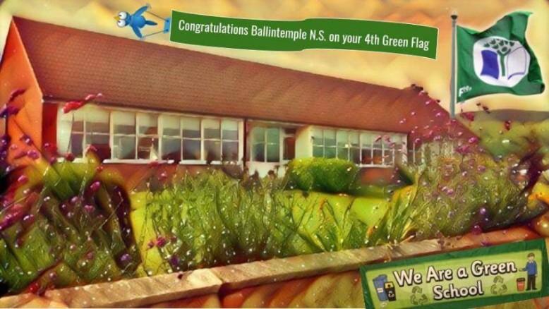 Green School Ballycoog NS