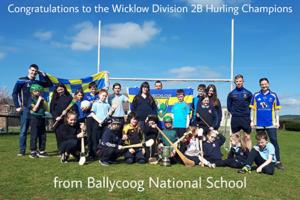 Wicklow Hurlers Visit Ballycoog NS