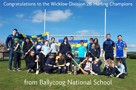 wicklow-hurlers-visit-ballycoog-ns-post